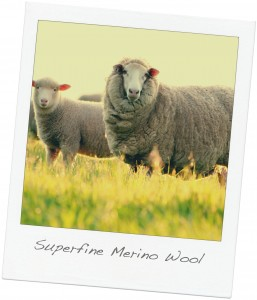 Superfine Merino Wool